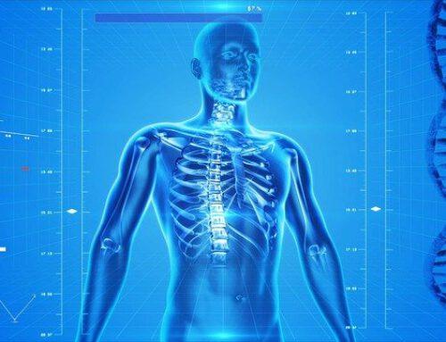 Systems Medicine (Doctorate School)